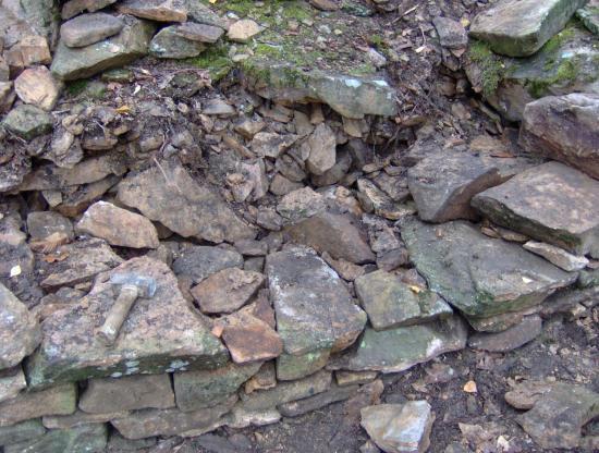 roche bergere 002